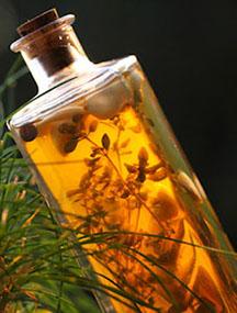 Idi na Poklanjamo vam etarsko ulje eukaliptusa